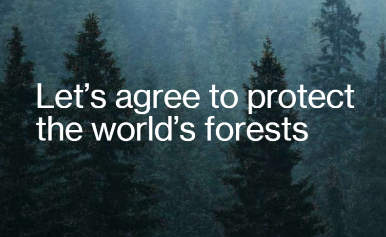 lets agree to protect the worlds forests